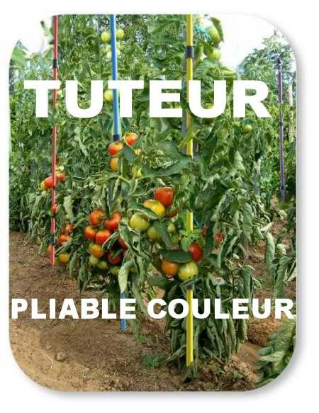 tuteur tomate multicolore
