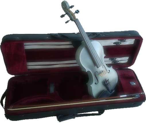 violon sylvicole brut teinté gris bleuté