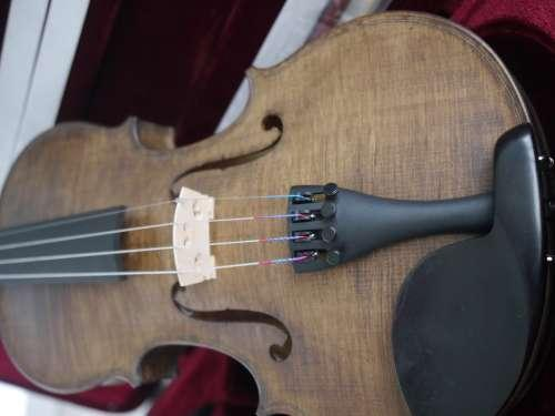 coloris CHENE Violon teinté en France