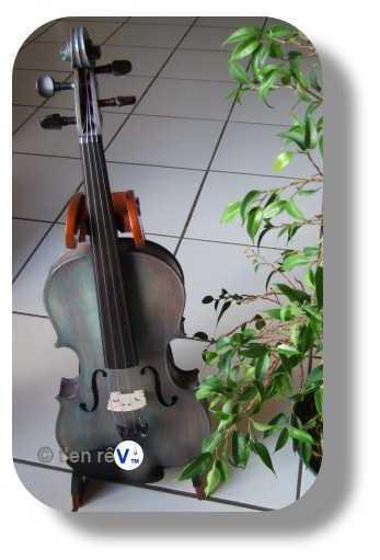 violon sylvicole brut teinté gris