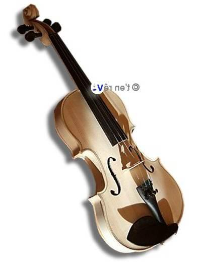 violon incolore 4/4 brillant