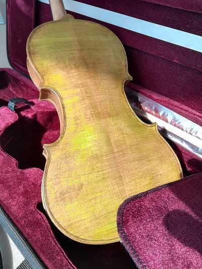 violon vert Rigozetti