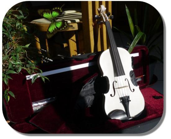 violon blanc Rigozetti