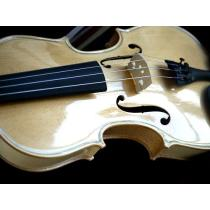 violon 4/4 incolore brillant