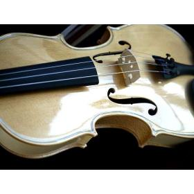 Violon INCOLORE NATUREL 4/4 brillant