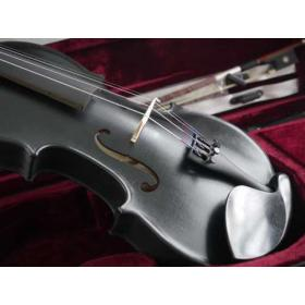 violon NOIR RIGOZETTI 4/4 adulte