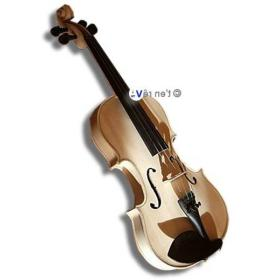 Violon original SYLVICOLE bois brut naturel