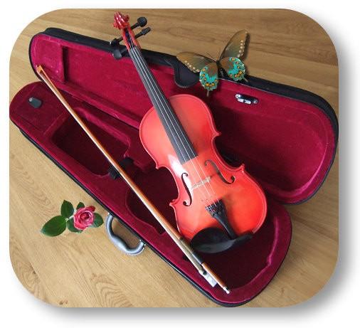 violon adulte 4/4 ROUGE SOMBRE nervures apparentes